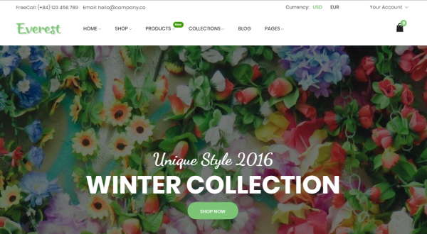 10 Best Shopify Themes For Your Online Store - 2017